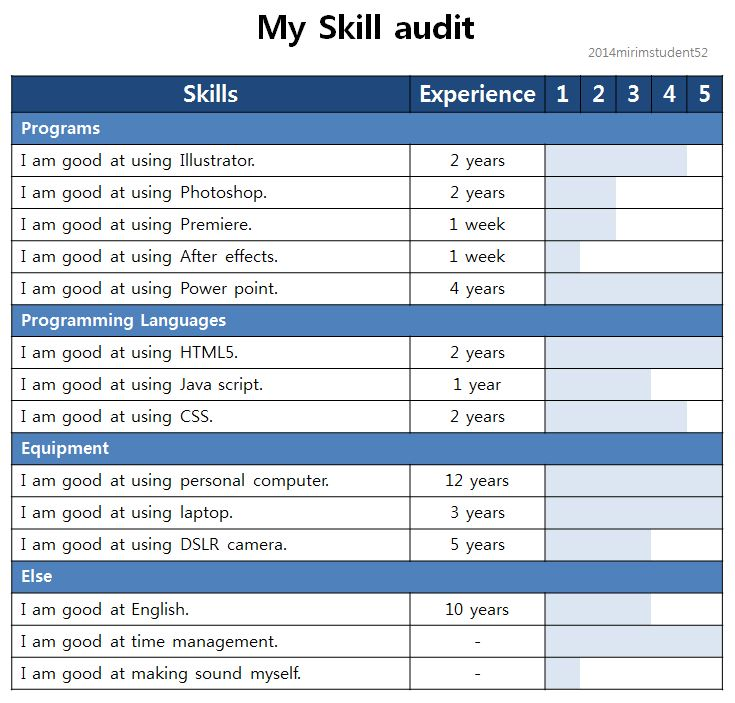 what is a personal skills audit